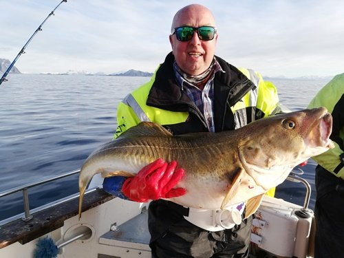 20kg cod for Bernt